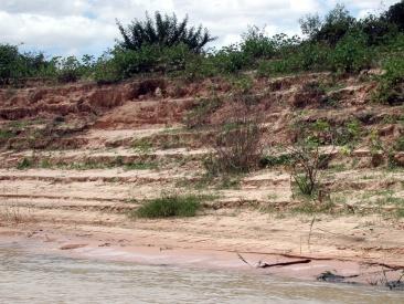 Erosão em propriedade rural na margem do rio São Franciso . Propriá, SE.